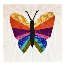 Schmetterling Regenbogen